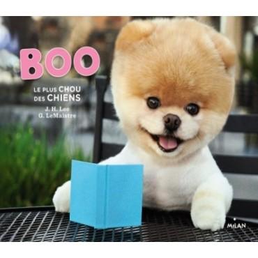 Boo, le plus chou des chiens