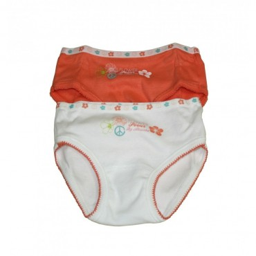Lot de 2 Culottes Absorba Flower