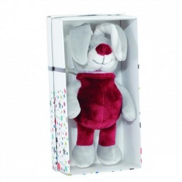 Petit Lapin sous boîte cadeau